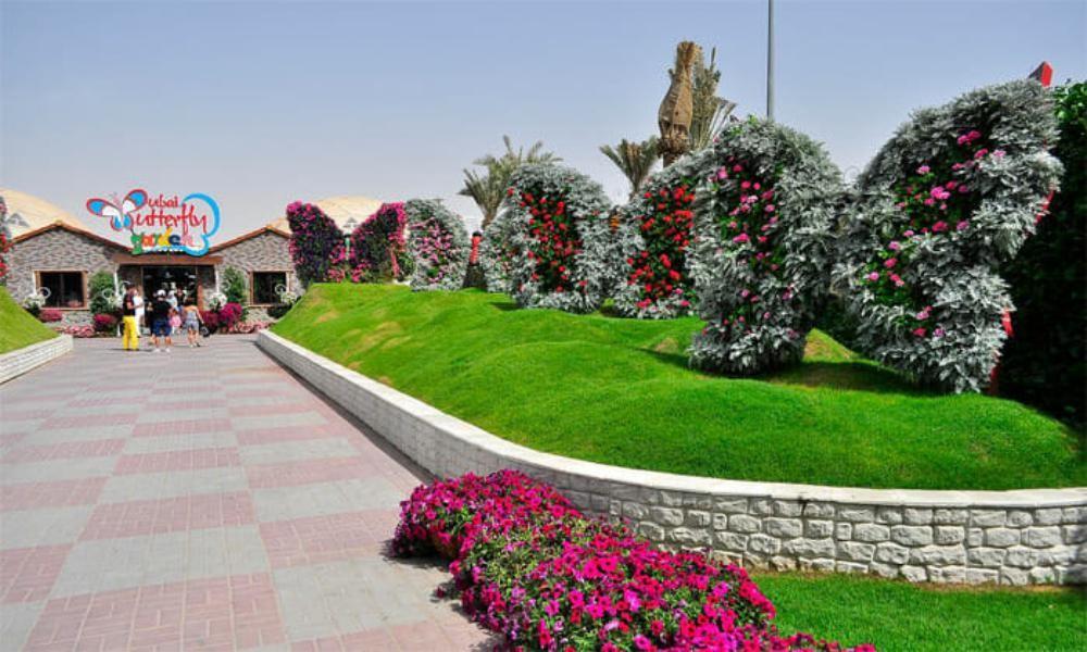 Butterfly Garden Dubai Location Timings Ticket Deals Entry Fee Jtr